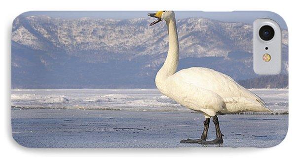 Whooper Swan Calling Hokkaido Japan IPhone Case