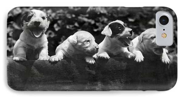 why I Love A Dog Prizes Phone Case by Underwood Archives