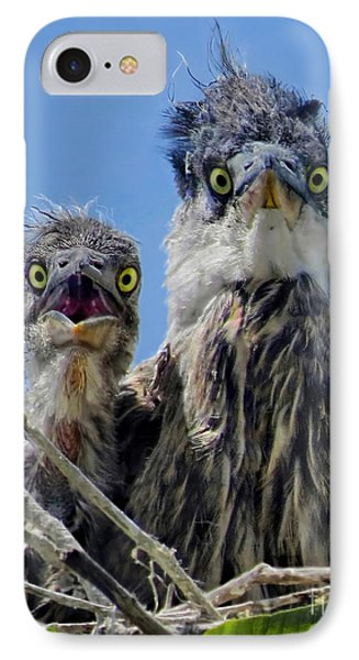 Wide Eyed Baby Herons IPhone Case by Jennie Breeze