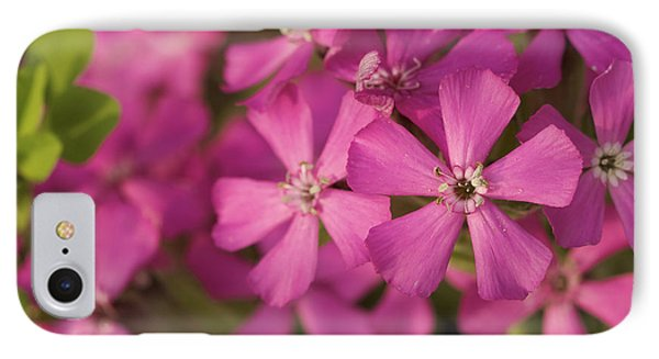 IPhone Case featuring the photograph Wild About Pink - Pink Wildflower Art Print by Jane Eleanor Nicholas