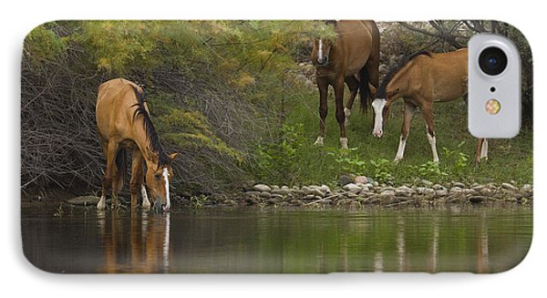 Wild Along The River IPhone Case by Sue Cullumber