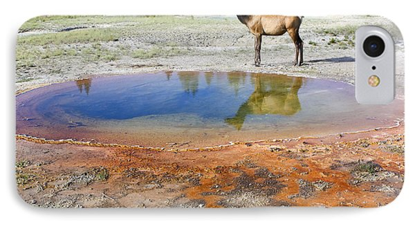IPhone Case featuring the photograph Wild And Free In Yellowstone by Teresa Zieba