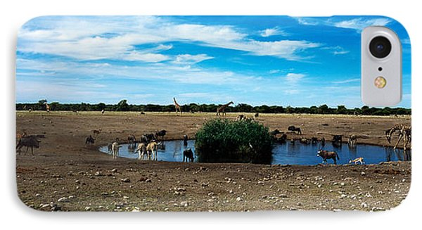 Wild Animals At A Waterhole, Etosha IPhone Case