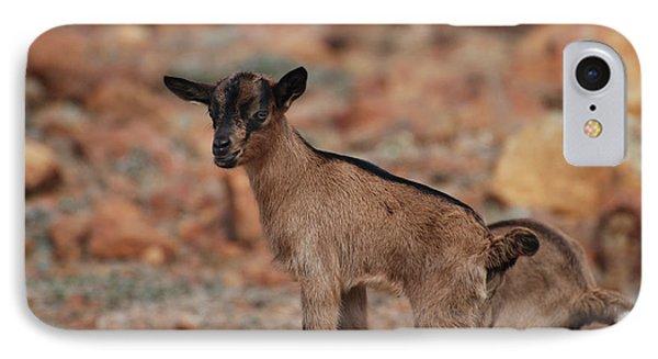 Wild Baby Goat IPhone Case by DejaVu Designs