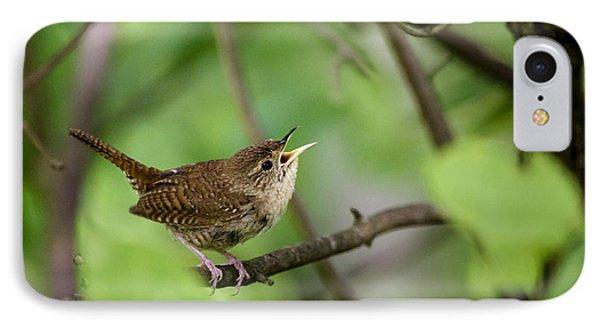 Wild Birds - House Wren IPhone 7 Case by Christina Rollo