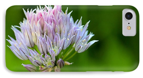Wild Blue - Chive Blossom IPhone Case by Adam Romanowicz