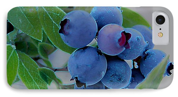 Wild  Blueberries IPhone Case by Shirley Sirois