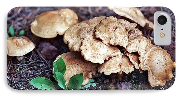 IPhone Case featuring the photograph Wild Chicken Mushrooms by Juls Adams