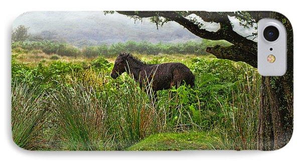 IPhone Case featuring the photograph Wild Dartmoor Foal by Menega Sabidussi