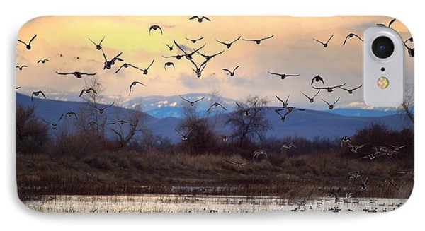 IPhone Case featuring the photograph Wild Ducks And Geese by Lynn Hopwood