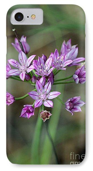 Wild Garlic - Allium Drummondii IPhone Case by Susan Schroeder