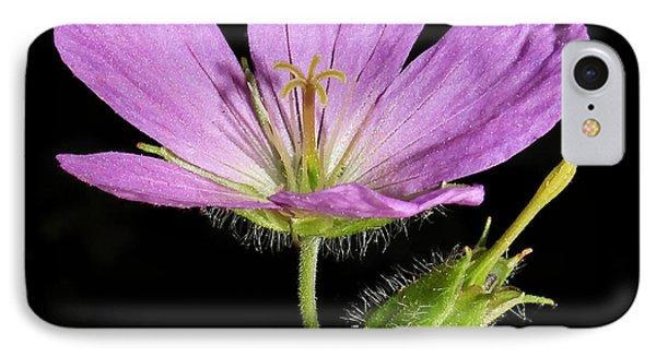 Wild Geranium IPhone Case by Tammy Schneider
