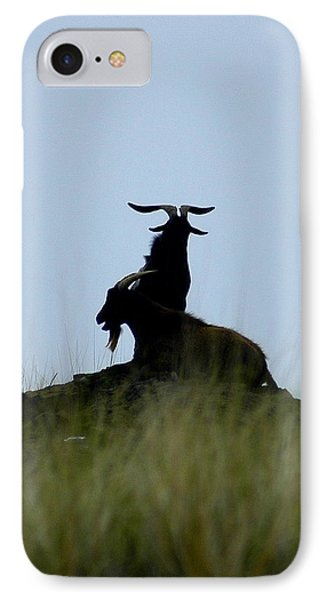 Wild Goats Of Kona IPhone Case by Lori Seaman