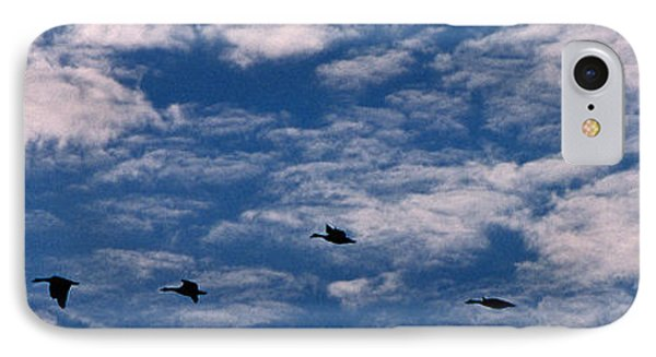 Wild Goose Heaven Phone Case by Skip Willits