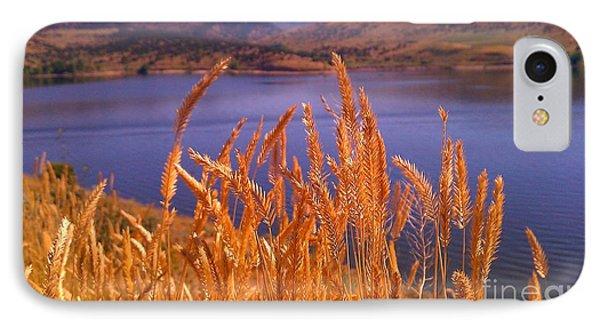 Wild Grain IPhone Case by Chris Tarpening
