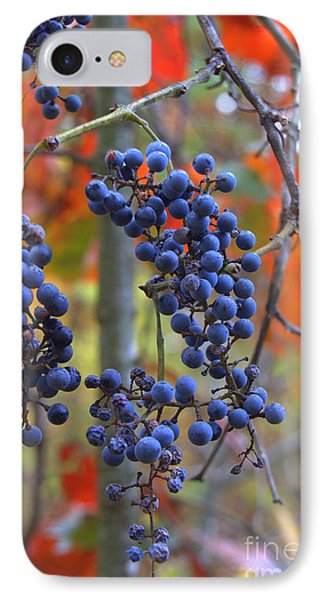 IPhone Case featuring the photograph Wild Grapes by Jim McCain