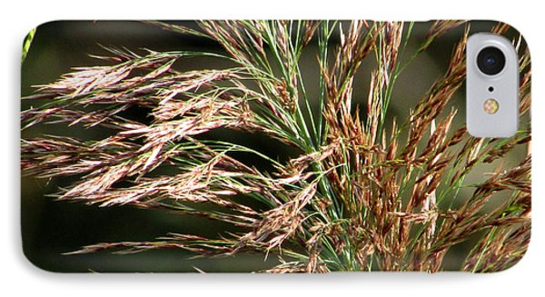 IPhone Case featuring the photograph Wild Grasses I by Kimberly Mackowski
