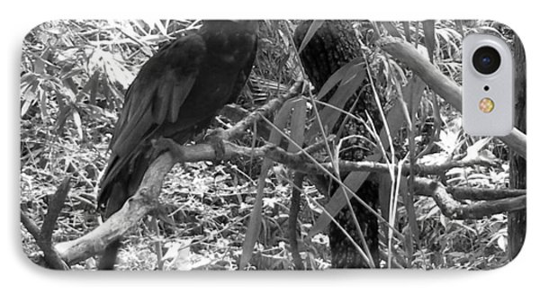 IPhone Case featuring the photograph Wild Hawaiian Parrot Black And White by Joseph Baril