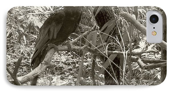 IPhone Case featuring the photograph Wild Hawaiian Parrot Sepia by Joseph Baril
