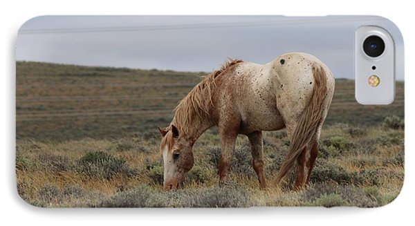 IPhone Case featuring the photograph Wild Horse by Christy Pooschke