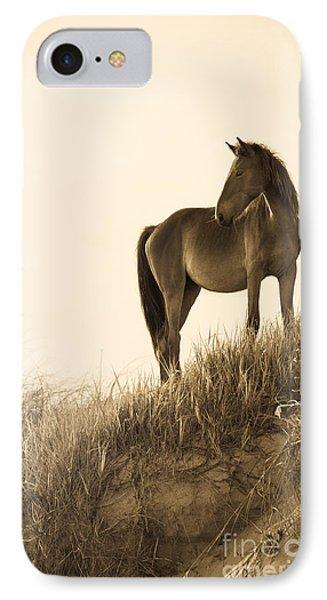 Wild Horse On The Beach Phone Case by Diane Diederich