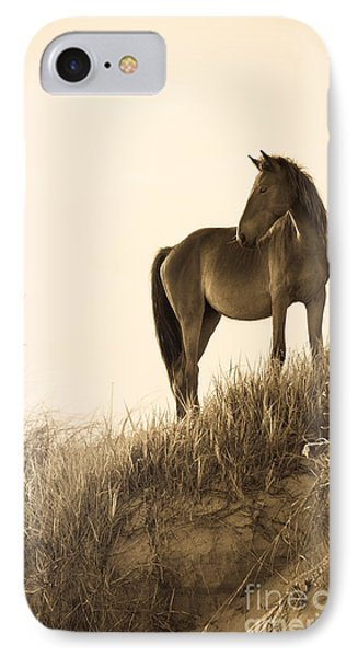 Wild Horse On The Beach IPhone Case