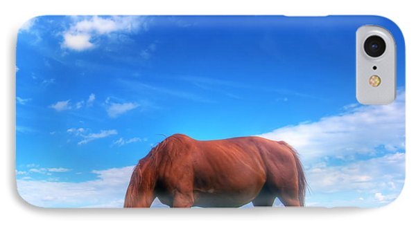 Wild Horse On The Field Phone Case by Michal Bednarek