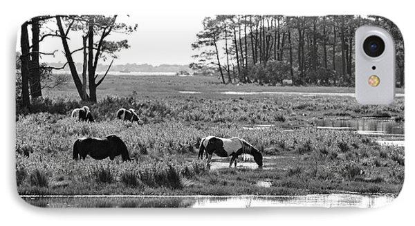 Wild Horses Of Assateague Feeding Phone Case by Dan Friend