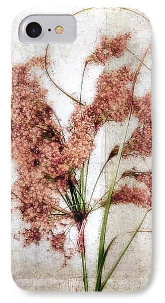 Wild Indian Rice In Autumn #2 IPhone Case by Louise Kumpf