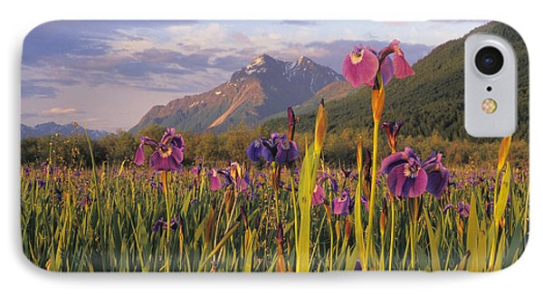 Wild Iris Blooming In Front Of Pioneer IPhone Case by Jim Barr