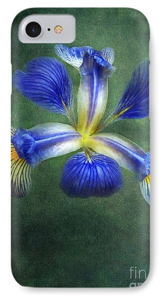 Wild Iris IPhone Case by Kathi Mirto