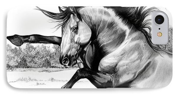 Wild Kiger Mustang Stallion IPhone Case