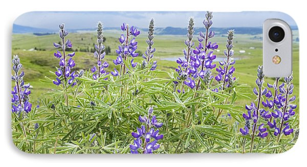 Wild Lupine Phone Case by Theresa Tahara