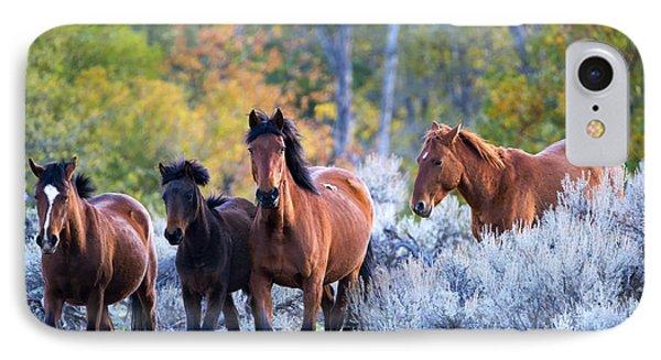 Wild Mustang Autumn IPhone Case