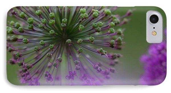 Wild Onion IPhone Case by Heiko Koehrer-Wagner