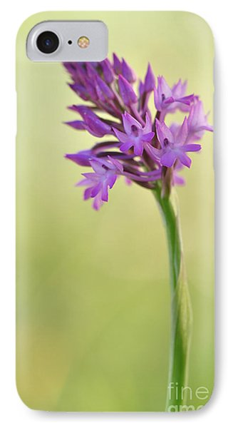 IPhone Case featuring the photograph Wild Orchid by Simona Ghidini