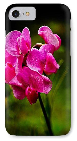 Wild Pea Flower IPhone Case by Robert Bales
