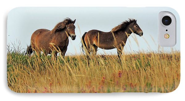 IPhone Case featuring the photograph Wild Ponies On Exmoor by Jayne Wilson