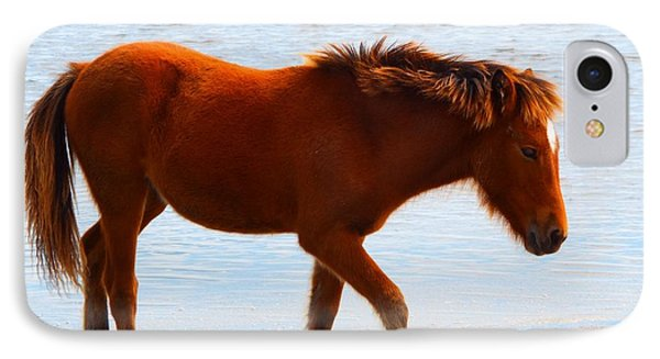 Wild Pony IPhone Case by Cindy Croal