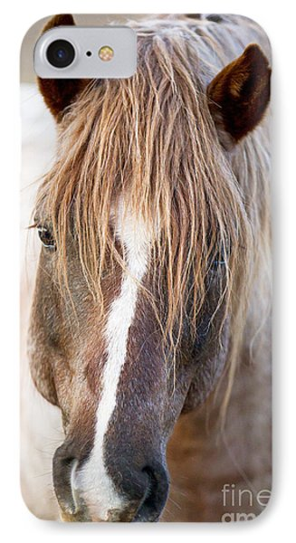 Wild Red Roan Stallion Comes Close Phone Case by Carol Walker