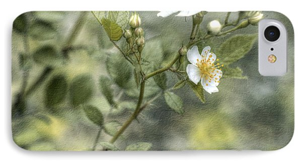 IPhone Case featuring the photograph Wild Rose by Kathleen Holley