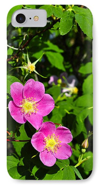 IPhone Case featuring the photograph Wild Roses by Cathy Mahnke
