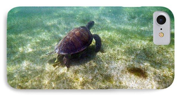 IPhone Case featuring the photograph Wild Sea Turtle Underwater by Eti Reid