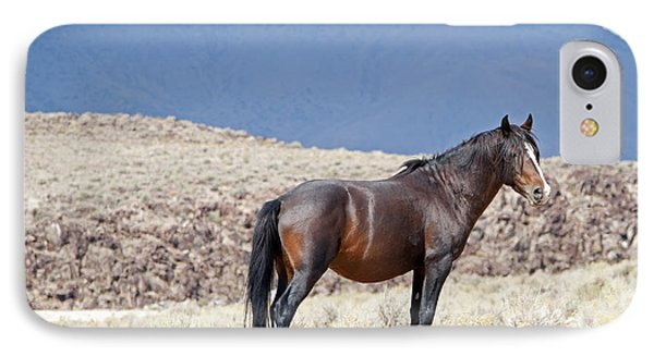 Wild Stallion In The Mountains IPhone Case by Lula Adams