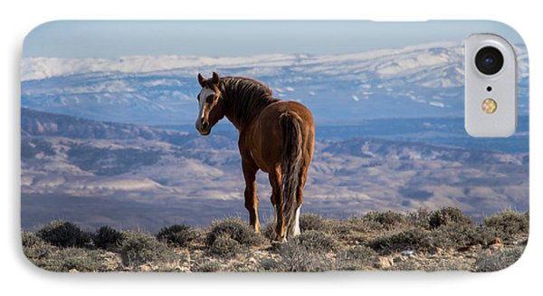 Wild Stallion Of Sand Wash Basin IPhone Case