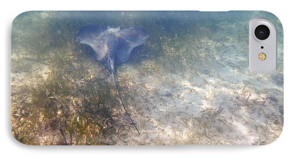 IPhone Case featuring the photograph Wild Sting Ray by Eti Reid