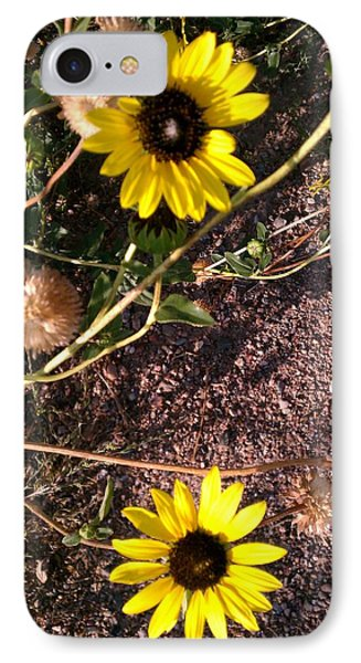 IPhone Case featuring the photograph Wild Sunflowers by Fortunate Findings Shirley Dickerson