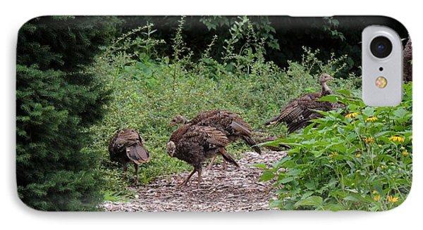 Wild Turkey Family IPhone Case by Teresa Schomig