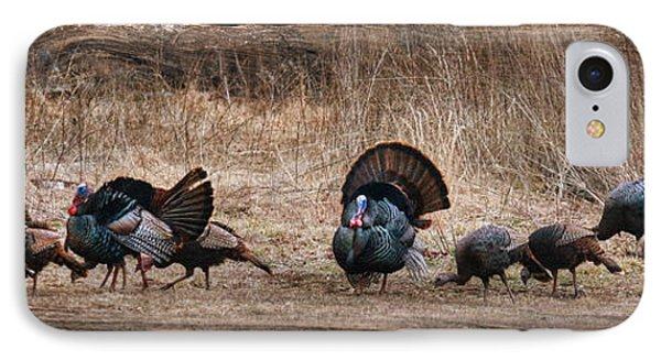 Wild Turkeys IPhone 7 Case by Lori Deiter