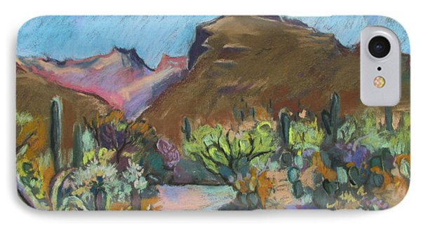 Wild Tuscon IPhone Case by Linda Novick